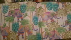 Tropical Wonderland by Millie Marotta #colouringbook #tropicalwonderland #milliemarotta #adultcolouringbook #coloring #Cee #colouring
