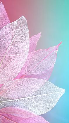 Abstract wallpaper for your iPhone XS from Everpix wallpaper Spring wallpaper for iPhone Abstract Wallpaper, Frühling Wallpaper, Watercolor Wallpaper Iphone, Flower Iphone Wallpaper, Flower Background Wallpaper, Wallpaper Keren, Cellphone Wallpaper, Colorful Wallpaper, Iphone Spring Wallpaper