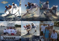 Our latest NEWSLETTER! Corporate Retreats, Sailfish Conference, Fishing Highlight and more... news, sport fishing, Family Vacation