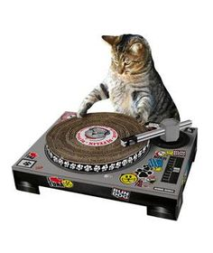 Cat DJ Scratching Deck: Save a sofa! Kitty can scratch until his heart's content on this faux DJ deck made of super durable cardboard.