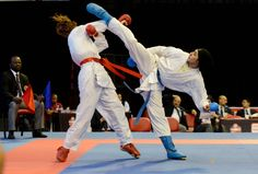 If you like our pins and would like more martial arts articles don't forget to visit: www.shotokankaratediary.com
