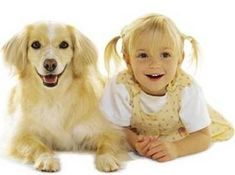 Just a friendly reminder to people thinking about adopting a puppy or dog. Become a responsible owner and research what it takes to own a dog, and the differences between breeds. Not all dog breeds are equal, not even close! Picking a dog because it is cute can lead to disaster and is the reason dogs end up in shelters. People don't look into if a particular dog is rite for their lifestyle and personality, and don't look ahead to the next 15 years. Take the time and do the research it pays off.