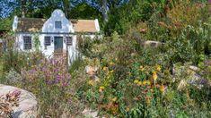 See The Trailfinders South African Wine Estate Show Garden at RHS Chelsea Flower Show / RHS Gardening Barbara Hepworth, Yorkshire, Chelsea Flower Show 2018, South African Wine, Cape Dutch, West End, London, Garden Design, House Styles