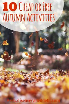 Autumn is a great season to be outdoors and there are plenty of fun things you can do that are free or cheap. You can save money this autumn!