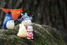 Totoro! (photo by Cary Yuen)