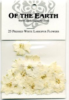 White Larkspur Pressed Flowers - pack of 25 1 inch diameter Plastic Bag Packaging, Flower Packaging, Larkspur Flower, Rustic Place Cards, Wedding Name, Diy Jewelry Supplies, Biodegradable Products, Holiday Cards, Mother Nature
