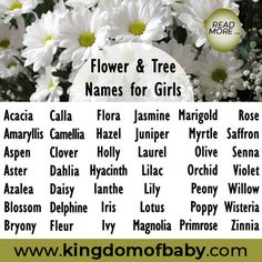 Choosing a name for your little angel can be a tough one after all there are millions of different beautiful and bizarre names to choose from. Check the link above and read more about Rose meaning name and personality. Flower Names For Girls, Unique Flower Names, Pretty Girls Names, Unique Names For Pets, Girl Middle Names, Baby Names Flowers, Beautiful Baby Girl Names, Rose Meaning, Feminine Names