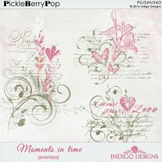 Moments In Time Overlays by Indigo Designs