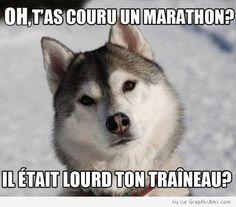 Oh, t'as couru un marathon ?  Il était lourd ton traîneau ?
