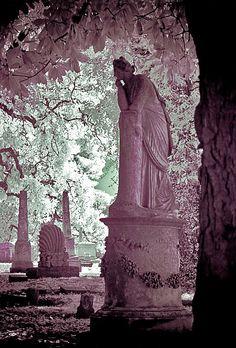 Elmwood Cemetery- Memphis Tennessee, Pondering Angel, photo by Paula Cravens