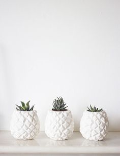 Pineapple Pots. (scheduled via http://www.tailwindapp.com?utm_source=pinterest&utm_medium=twpin&utm_content=post14332598&utm_campaign=scheduler_attribution)