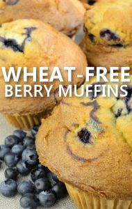 Dr Oz: Wheat Belly Diet Recipes & Gluten-Free All purpose baking mix.  4 cups Almond meal/flour 1 cup Golden Flaxseeds, ground ¼ cup Coconut Flour 2 teaspoons Baking Soda