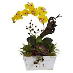 Nearly Natural Orchid and Succulent Garden with White Wash Planter Yellow - 1458-YL