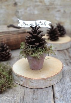 placeholder with pinecone