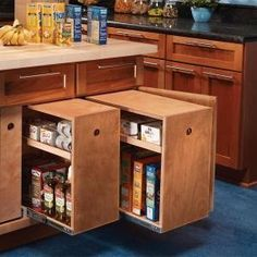 Build Organized Lower Cabinet Rollouts for Increased Kitchen Storage jerrygerler