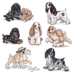 "Click visit site and Check out Best ""English Cocker Spaniel"" T-shirts. This website is superb. Tip: You can search ""your name"" or ""your favorite shirts"" at search bar on the top. American Cocker Spaniel, Cocker Spaniel Puppies, Spaniel Breeds, Dog Breeds, Cockerspaniel, English Cocker, Dog Tattoos, Dog Art, Animal Drawings"