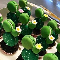 Cactus cupcakes with macarons on top - and small flowers, just sweet ♥ . - Cactus cupcakes with macarons on top – and small flowers, just sweet ♥ … - Kaktus Cupcakes, Cute Food, Yummy Food, Cute Baking, Macaron Cookies, Cute Desserts, Disney Desserts, Baking Desserts, Baking Cupcakes