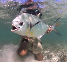 Solitude, home-cooked food and a lot of big fish make for an idyllic Cuban getaway.