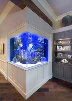 Custom Residential Corner Aquarium in the Swanson Residence by Living Color Aquariums