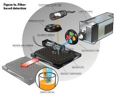Image result for microplate reader
