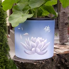 Hand dyed flower pot Hand Painted Flower pot Lotus flower