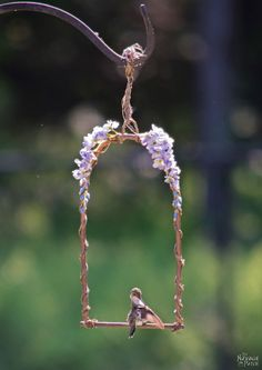 DiY Hummingbird Perch - The Navage Patch