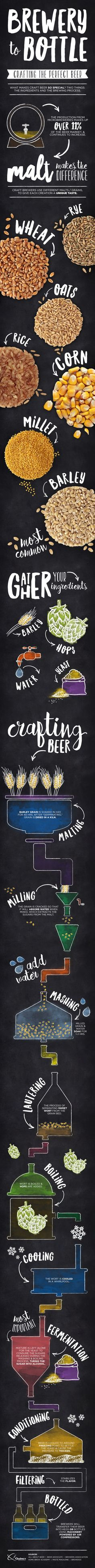Brewery to Bottle Infographic on how to brew beer - homebrewing guide with ingredients and processes explained!