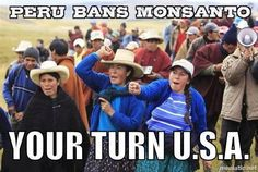 Peru bans Monsanto. We need to do it here in the US.   We need to get  Monsanto's  money out of Washington ( Congress, supreme court, and the FDA) so we can!