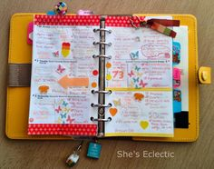 She's Eclectic: My week #40