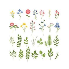 Seamless floral pattern vector folk design by Lenlis on VectorStock® The Effective Pictures We Offer You About my ideas diy A quality picture can tell … Art Floral, Floral Drawing, Motif Floral, Floral Doodle, Watercolor Flowers, Watercolor Paintings, Vintage Clipart, Valentines Day Drawing, Small Flower Tattoos