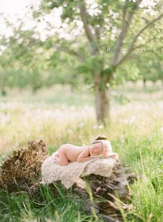 Gorgeous outdoor newborn and family photos