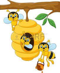 Resultado de imagem para abelhas