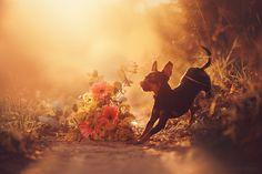 Kima by Ksenia Raykova on 500px