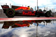 Max Verstappen, Red Bull Racing Photo by XPB Images on March 2017 at Barcelona pre-season testing I. Browse through our high-res professional motorsports photography True Colors, Colours, Australian Grand Prix, F1 2017, Red Bull Racing, Indy Cars, Formula One, Aston Martin, Monster Trucks