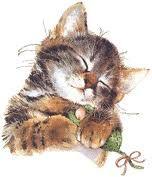 Het gedrag van de kat - LeerWiki.nl - Schat aan informatie