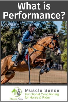 What does performance really mean in horse training and in our own riding? For the equestrian and our horse, performance can mean many things. The truth on performance has nothing to do with comparison, and everything to do with progress. Equestrian Outfits, Equestrian Style, Horse Information, Horse Training, Show Jumping, Pretty Horses, Horse Care, Show Horses, Horseback Riding