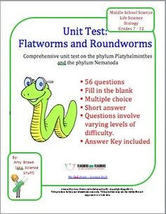 This is a chapter test covering the topic of flatworms and roundworms; the phylum Platyhelminthes and the phylum Nematoda.    Topics covered: Planaria, labeling structures on the Planaria, germ and tissue layers, symmetry, cephalization, characteristics of each phylum, characteristics of parasitic worms, tapeworms, flukes, hookworms, Ascaris, pinworm.    There are 34 fill in the blank questions, 16 multiple choice questions, and 6 short answer questions.