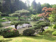 Google Image Result for http://seattle.findwell.com/wp-content/uploads/2010/09/Japanese-Garden2.jpg