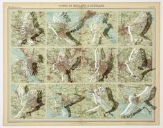 Map cutting art by Claire Brewster on the Free People blog