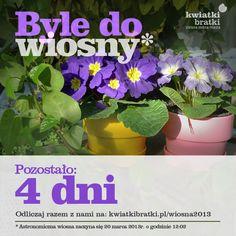 Byle do wiosny - #countdown - 4 dni #urbangardening #pots #flowers #flowerpot