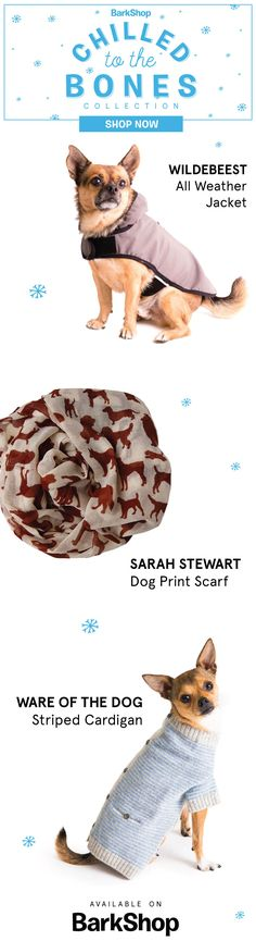 Prepare to bundle up, pup! Choose from jackets, cardigans, paw balm, toys, treats, and human products. Get the winter essentials you need today at BarkShop. Free shipping with minimum order.