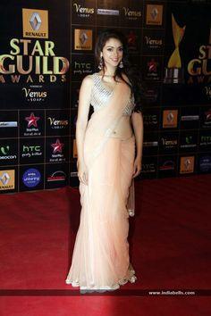 Bollywood Stars at Renault Star Guild Awards 2013