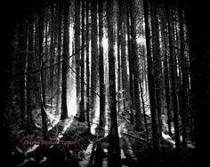 Misty Forest Photograph - Cherry Blossom Tattoo via Etsy #fpoe
