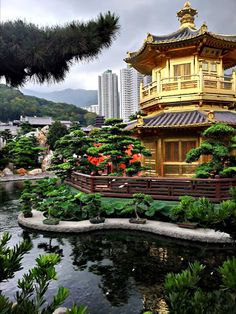 Hong Kong Park...we went here when we were in Hong Kong! Beautiful