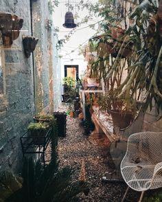 Quick stop by one of my favorite semi-hidden cozy gardens