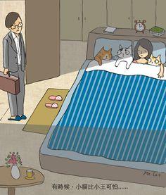 Ms Cat - 貓小姐的光陰筆記 - udn部落格