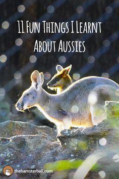 Australia | Australians | Aussies | Travel | Travel Blogger | Wanderlust | Culture |