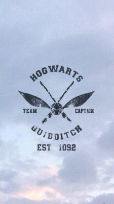 Hogwarts Quidditch