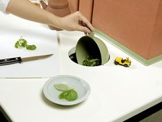 Flow kitchen (John Arndt & Wonhee Jeong, 2009): a living kitchen where nature and technology are integrated in a symbiotic relationship, processes flow into one another in a natural cycle, efficiently utilizing energy, waste, water and other natural resources.