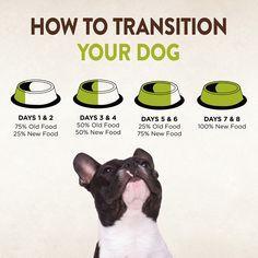 Best 25 Wellness Core Dog Food Ideas On Pinterest Half